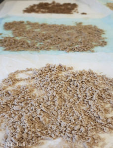 Toning powdered cellulose for stain removal