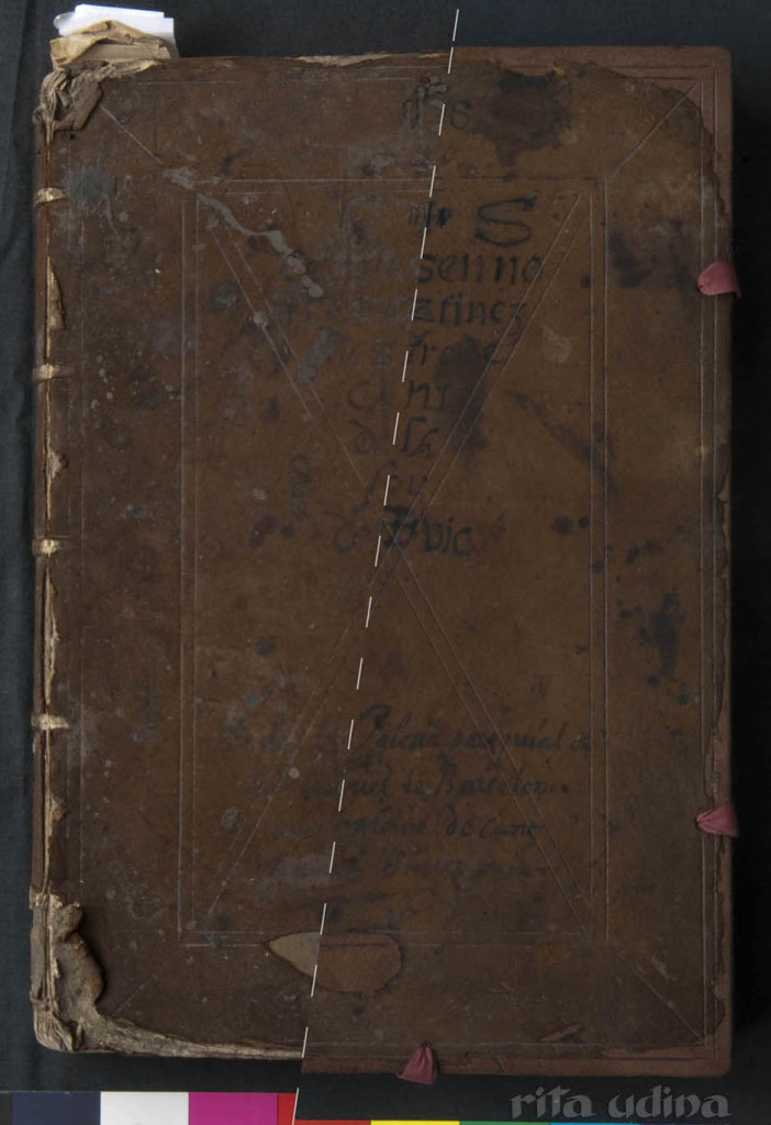 Renaissance binding in reverse leather