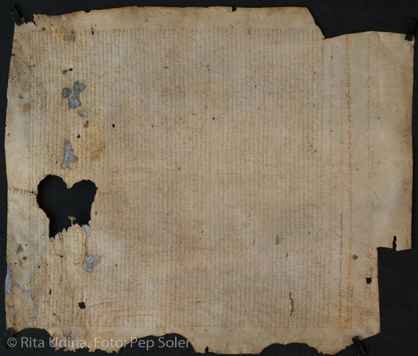 Parchment withot old repair, after treatment